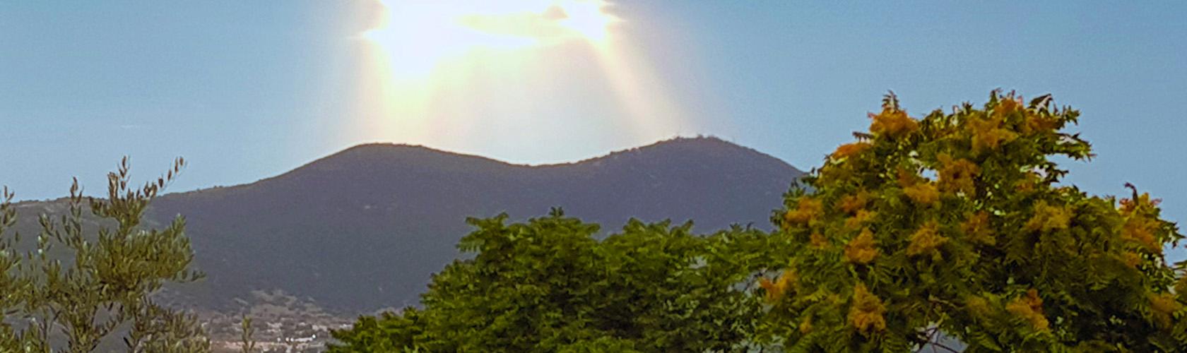 Imagem do site Joseph Saltoun